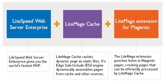 7 Reasons why your Magento Hosting should use LiteMage -